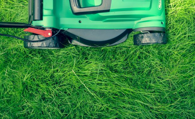 Image of lawn mower in the grass